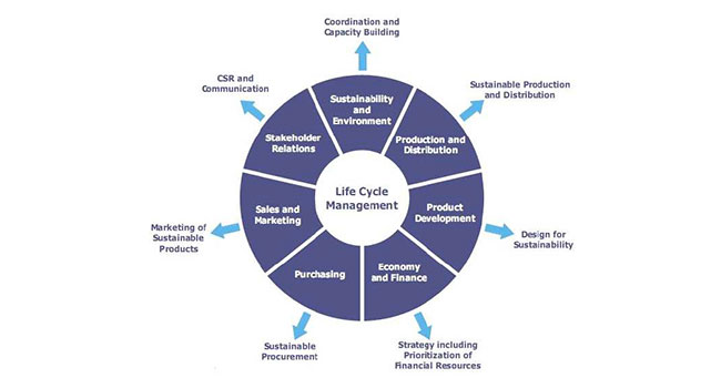 Life Cycle Management in companies